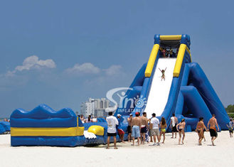 China 10m high commercial giant hippo inflatable water slide for adults with pool ended for beach water park supplier