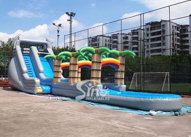 China 71' long kids tropical commercial inflatable water slide with big pool N 2 dolphins for outdoor use supplier