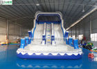 China Dolphin Double Lanes Inflatable Pool Water Slides EN14960 For Adults factory