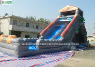 China Halloween Haunted Water Slide Bounce House , Kids Inflatable Pool Slide factory