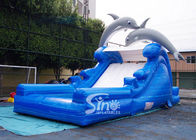 5m high cute dolphin kids inflatable water slide with pool from China inflatable factory