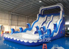Double Lanes Inflatable dolphin Water Slides with pool EN14960 For Adults and kids