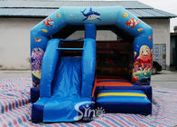 Commercial Outdoor Ocean Park Kids Combos With Slide For Amusement Park