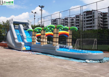 Tropical Long Outdoor Commercial Inflatable Water Slides With Dolphins for Children